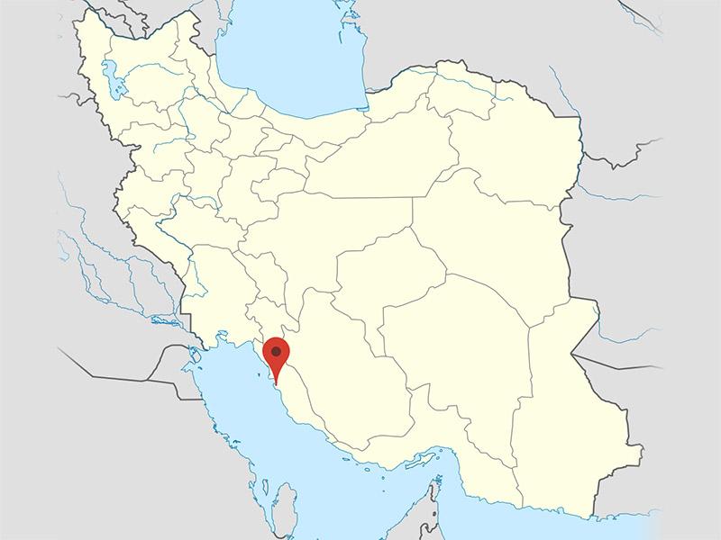 نمایندگی بوشهر